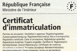 carte-immatriculation